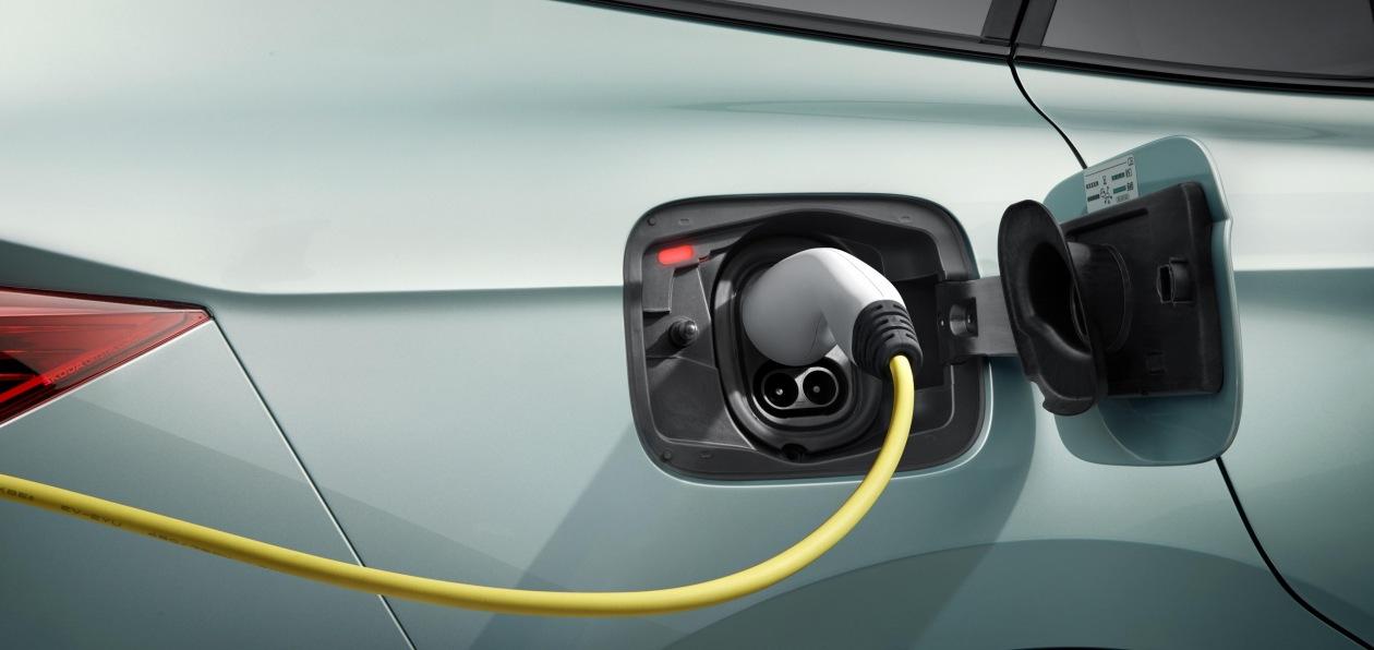 В Дании подсчитали стоимость перехода на электромобили для госбюджета